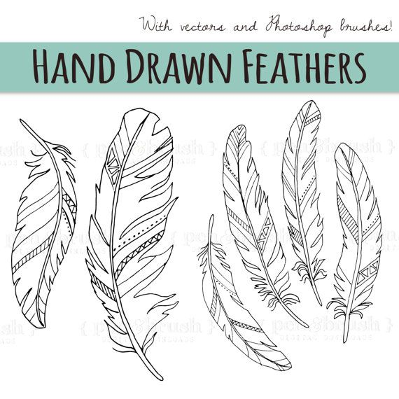 Chalkboard Feather Clip Art // Wedding by thePENandBRUSH on Etsy