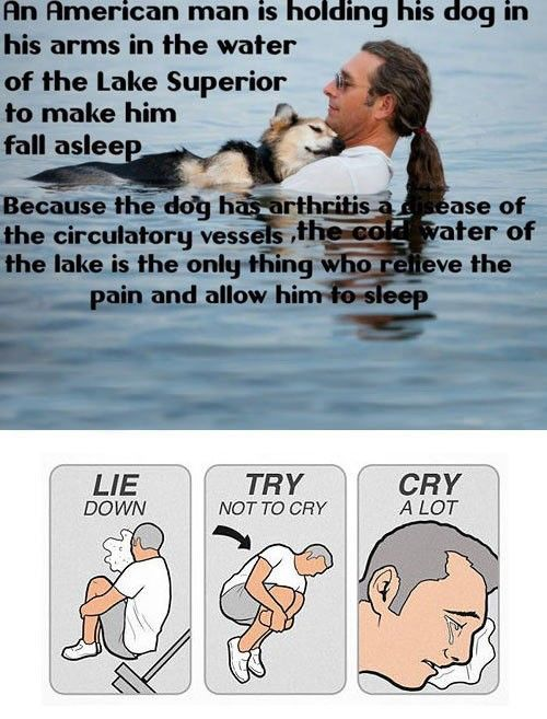 Lie Down. Try Not To Cry. Cry A Lot. An Emotional Meme Collection - Mandatory