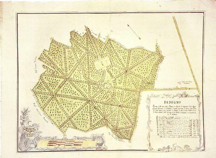Carta topografica del Bosco della Fontana a Marmirolo - Mantova Archivio di Stato , Archivio Cavriani -