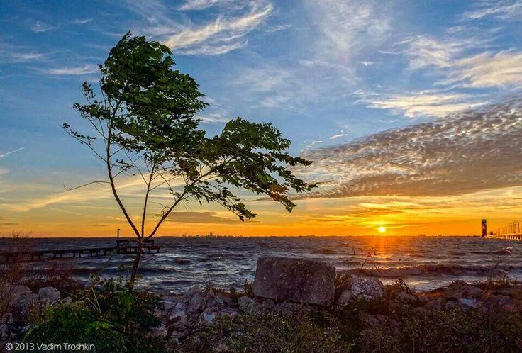 Good morning sunshine  beautiful sunrise today on the island