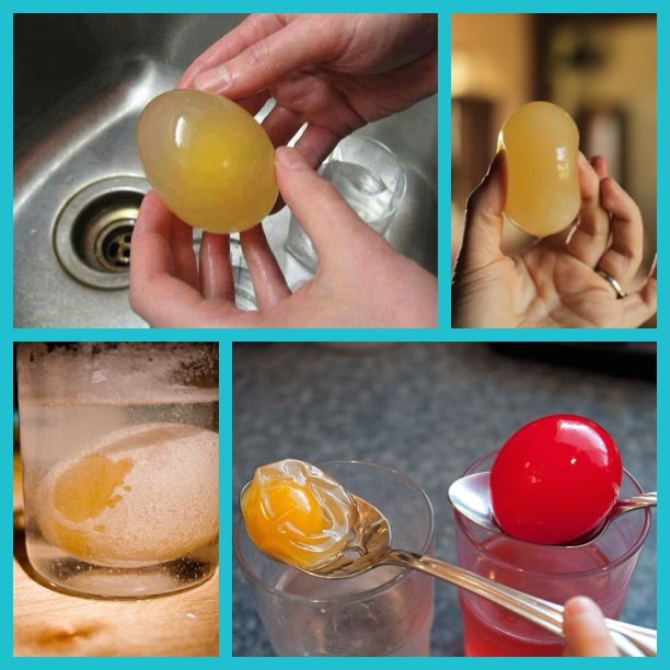 The Naked Egg Science Project - Stick egg in vinegar (enough to cover egg completely), seal and put in fridge for 3 to 5 days. Stir once every day. It bounces when done! But be careful, it can still pop. Soak it in corn syrup to make it shrivel up, then stick in water with food coloring. Osmosis will fill the egg back up but this time with the coloring on the inside! Fun for kids and grown-ups!