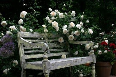 73 best images about savelli jardin secret on pinterest for Buy secret jardin