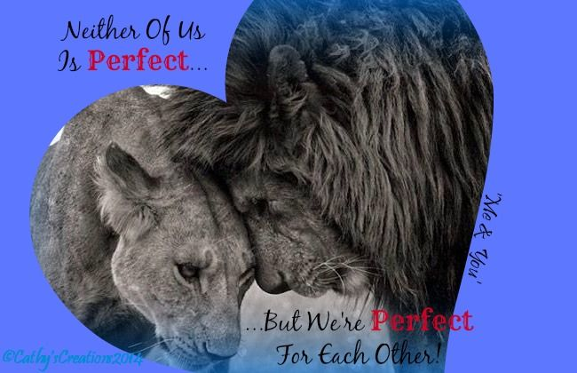 Each Other Is All We Got Quotes: 'Neither Of Us Is Perfect... ...But We Are Perfect For