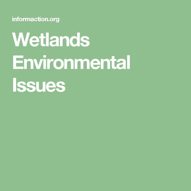 Wetlands Environmental Issues