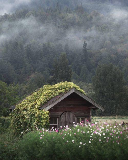 Cottage Peter Lundqvist