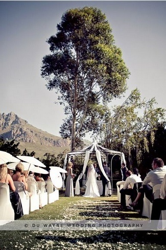 Top 20 Garden & Outdoor Wedding Venues in Cape Town | Confetti Daydreams - Fairytale wedding #ceremony venue at #Mountain #Shadows #Guest #House ♥ #Garden #Outdoor #Wedding #Venues #Cape #Town #tree