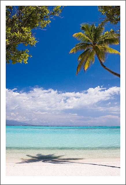 Moorea, una isla de la Polinesia Francesa. Donde el paraíso parece estar a la mano, donde uno se siente natural y relajado