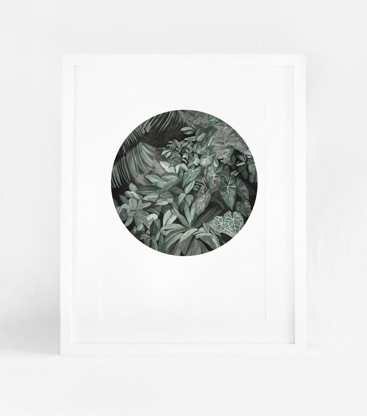Leden - Dark forest wheel A3