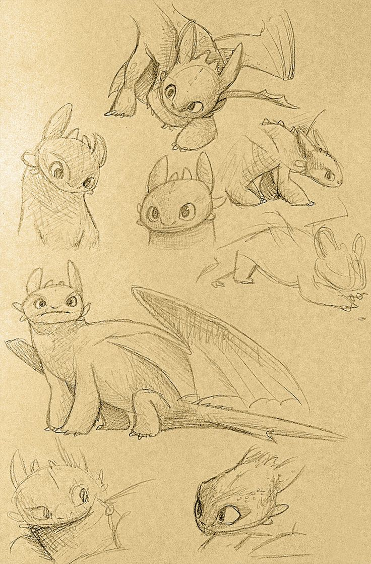 Toothless sketches by Atlantistel.deviantart.com on @deviantART  Love the curious look on toothless!