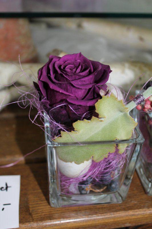 28 besten gefriergetrocknete rosen bilder auf pinterest farben angebote und blumen. Black Bedroom Furniture Sets. Home Design Ideas