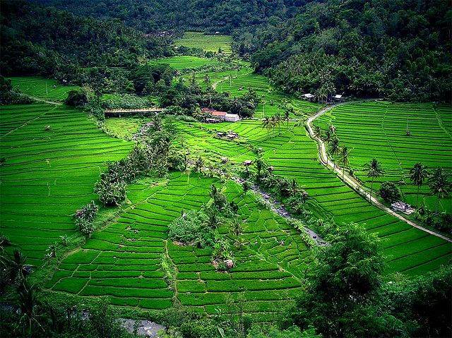 10 Top Tourist Attractions in Indonesia Indonesia is a huge country, in both population and land area, with significant cultural and geological diversity. With 18,110 islands, 6,000 of them inhabited, it is the largest archipelago in the world. The population of around 240 million people is derived from 300 ethnic groups who speak over 250 different languages. http://www.javasbeauty.com/10-top-tourist-attractions-indonesia/