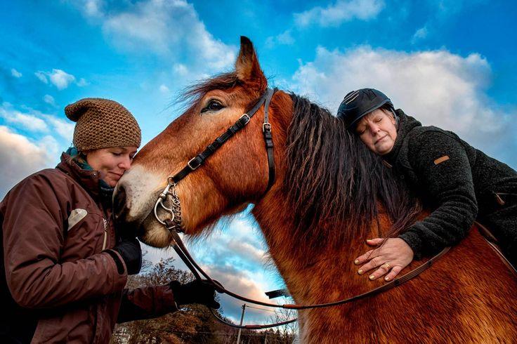 Bättre balans, ökat kroppsmedvetande och mindre stress. Ridning och kontakten med hästar är inte bara en hobby, utan kan också vara en väg till hälsa och självkännedom.