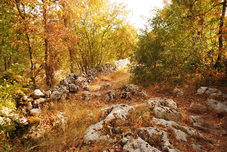 Un chemin bordé de pierres !
