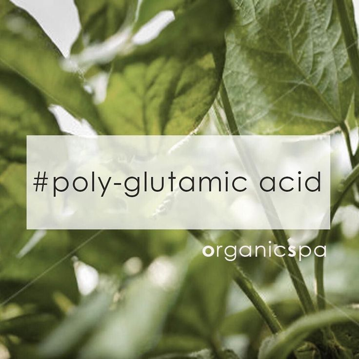 Sourced from natto (fermented soy beans no GMO) poly-glutamic acid is an active compound that keeps the skin hydrated stimulates collagen & long-term moisture retention. Soothe & restructure the protective barrier of your skin with this multifuctional molecule. PGA holds 5000x its weight in water 5 times more that hyaluronic Acid. . . . . . . #hydrationsaviour #organicspa #organicspasalon #organicspaskincare #organicspaproducts #veganskincare #australianmade#organicspaanniversary…