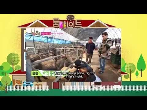 Roommate Season 2 Episode 22 Full Episode English Sub | Korea Variety Show