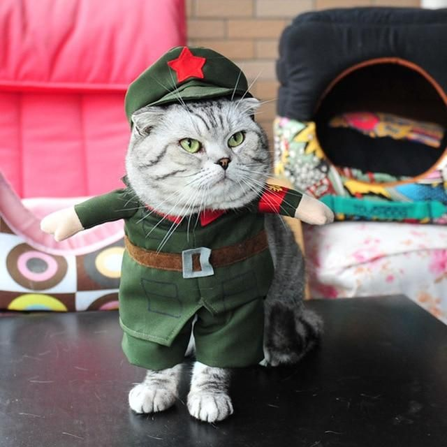 One Star Green Army Costume For Your Brave Cats And Dogs Pet