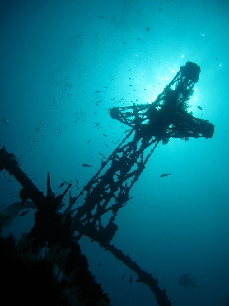 Wreck diving Koh Tao, Scuba Diving Thaialnd