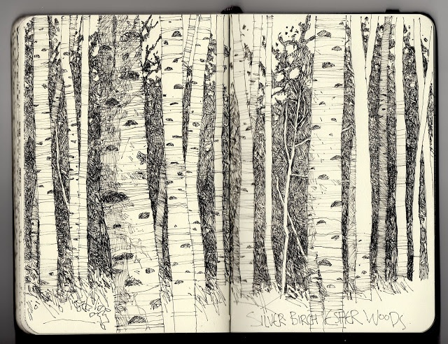Ian Sidaway Fine Line. Birches. Narnia theme. I'll photograph and edit a picture like this of aspen trees, and print it off at Staples so it is huge.