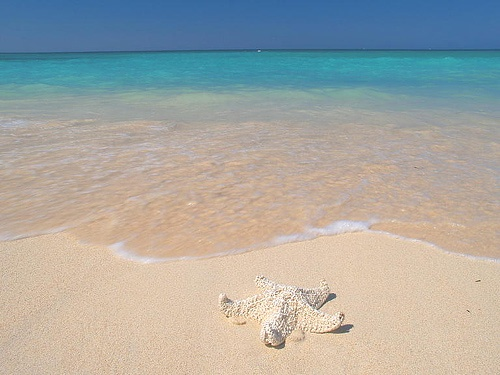 Baru Island, Playa Blanca. Near Cartagena
