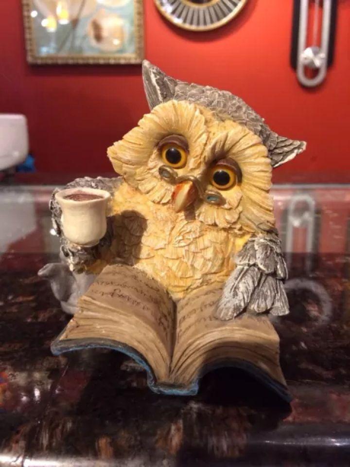 Poly Resin Tea Time Owl Figurine
