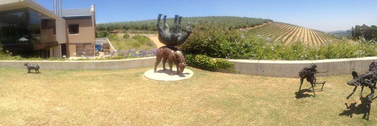 Sculpture garden at Tokara Wine Estate