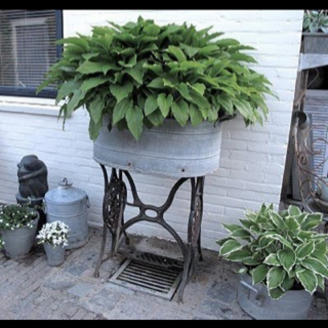 Love old galvanized tubs as planters! Can't wait till spring! Maybe I'll do this at our cottage.