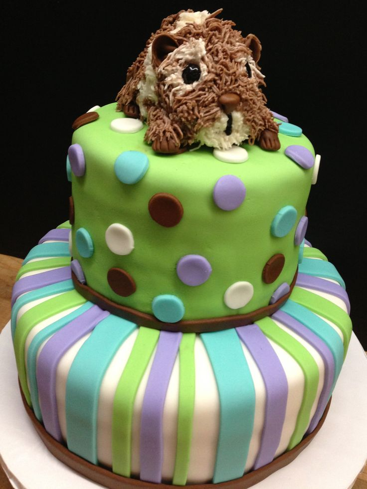 Hamster Cake Children S Birthdays Pinterest Cake And