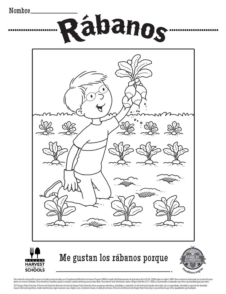 radishes free printable food hero coloring sheet in spanish coloringpage