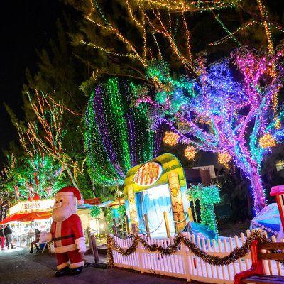 Miami: Santa's Enchanted Forest