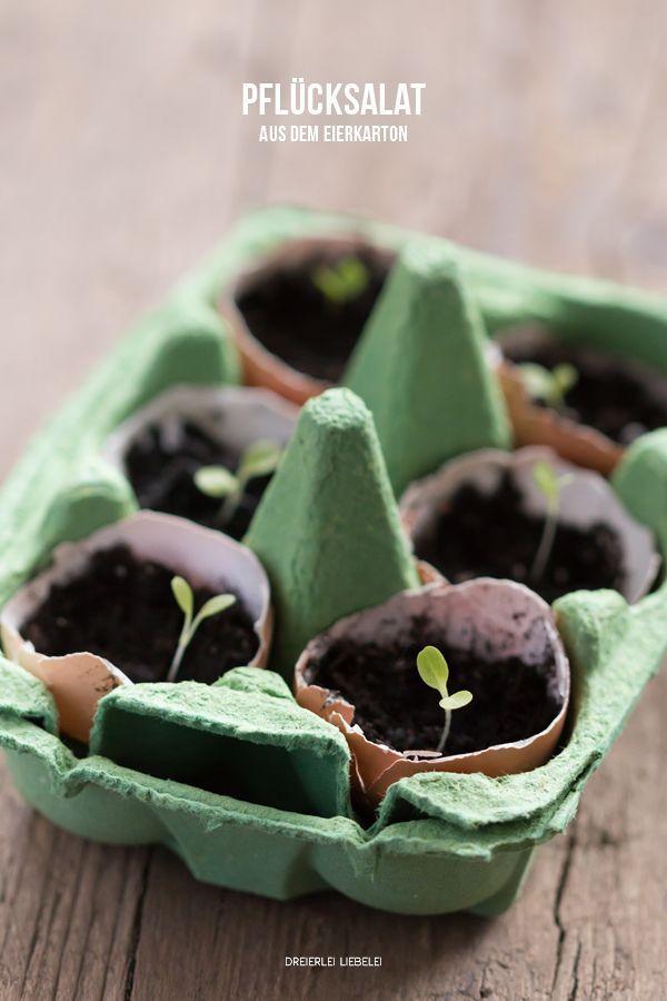 Wie hier bereits erwähnt: an Ehrgeiz mangelt es mir nicht und deshalb ziehe ich mir gleich in meiner ersten Garten- und Terrassen-Saison aus Bio-Saatgut selbst kleine Salat- und Gemüse-Babies heran. I