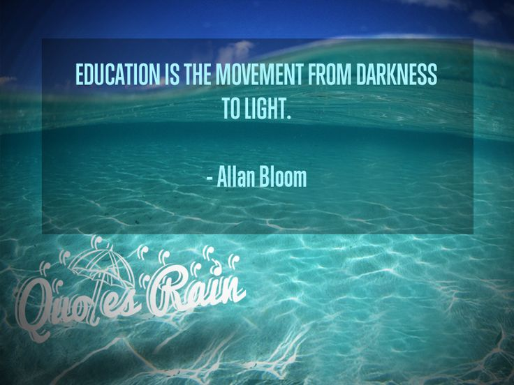 #AllanBloomQuotes #EducationQuotes