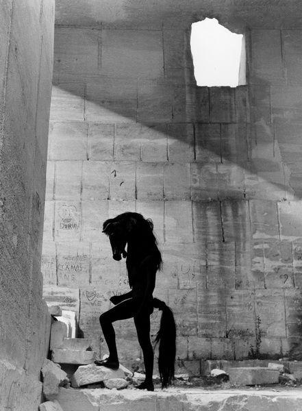 Le Don by Lucien Clergue - Musée Jean Cocteau | collection Séverin Wunderman