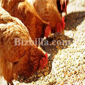 #Guar_Korma & #Guar_Meal  Guar gum is applied for various #food and other #industrial uses as a #viscosifier, #thickener, #binder, gelling agent, #stabilizer, emulsifier, flocculant, #water_holding_agent. Guar meal is a highest protein containing animal feed in its group  Read More<> https://goo.gl/zF3zOh