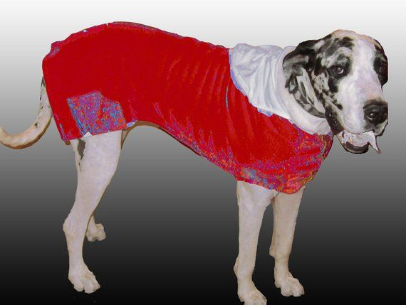 Bright Red And White Great Dane Giant Poly Sweatshirt Fabric