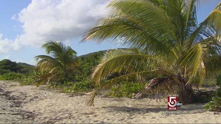"""A travel piece from a Boston TV station - """"A shaman to ward off hurricanes; Vieques hot sauce"""""""