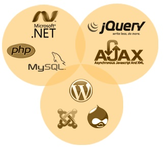 Dxpinfotech Toronto a web development company expert in effective web development services. We furnish you with unique web server configuration.