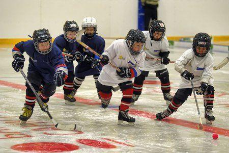В академии хоккея им. Фетисова будут льготные секции - Сайт города Домодедово