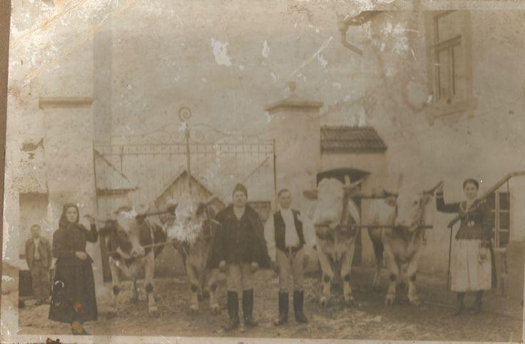 family Balavásár/Balauseri, Transylvania Hungarian