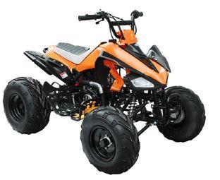 Brand New 125cc Fully Assembled Semi Automatic Elite Series ATV at SaferWholesale.com