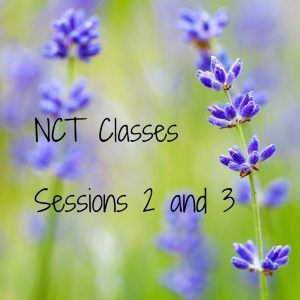 NCT CLASSES – SESSIONS 2 AND 3 by Pondering Parenthood