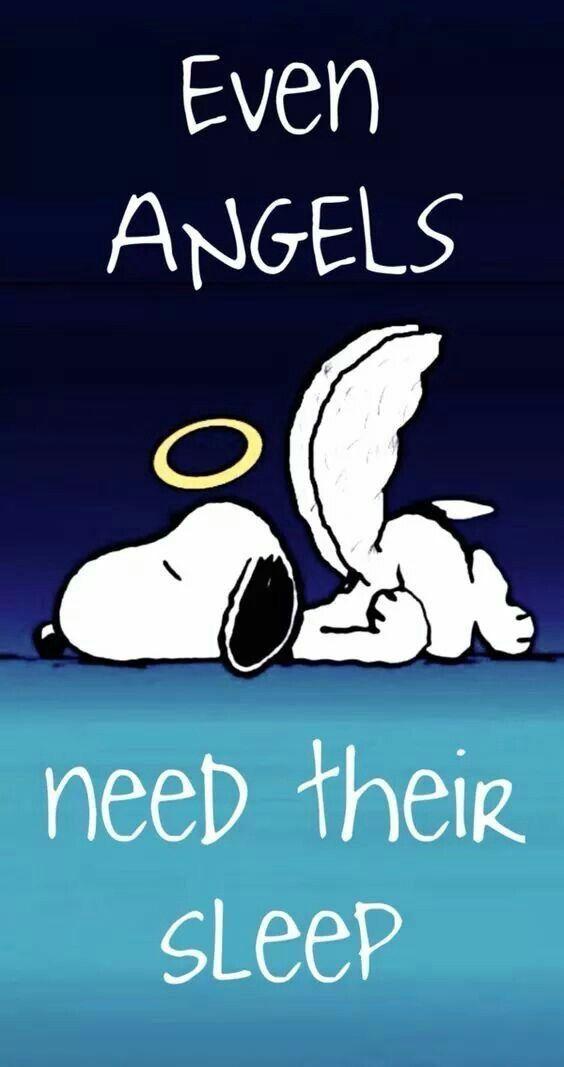 Gute Nacht, mein Engel. Schlaf gut und hab süße Träume. Treffe dich dort. Wunder sind auf dem Weg. LUMUNUWUTU XOXO YZ 😘❤