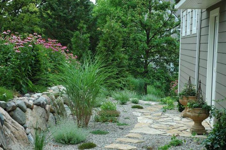 jardin sec avec des graminées ornementales et plantes vertes