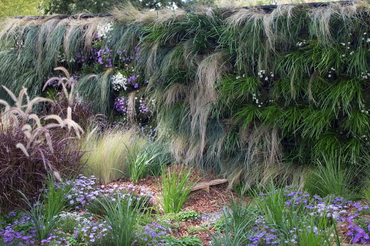 Beautiful Vertical Wall Melbourne Flower Show 2015