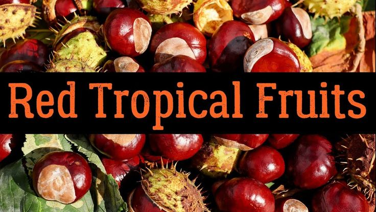 List Of Red Tropical Fruits You've Probably Never Heard Of (Photos)
