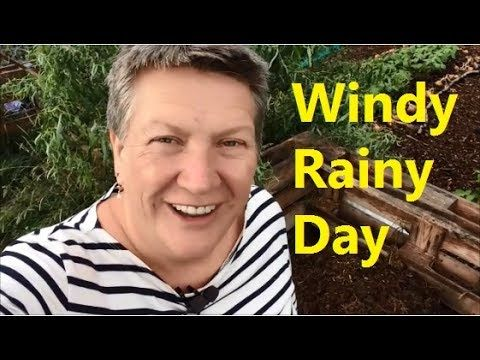 Repairing Wind Damage