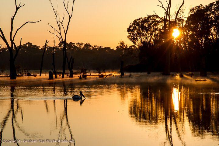 Sunrise - Gunbower Creek - Cohuna #Australian #Landscape #Photography