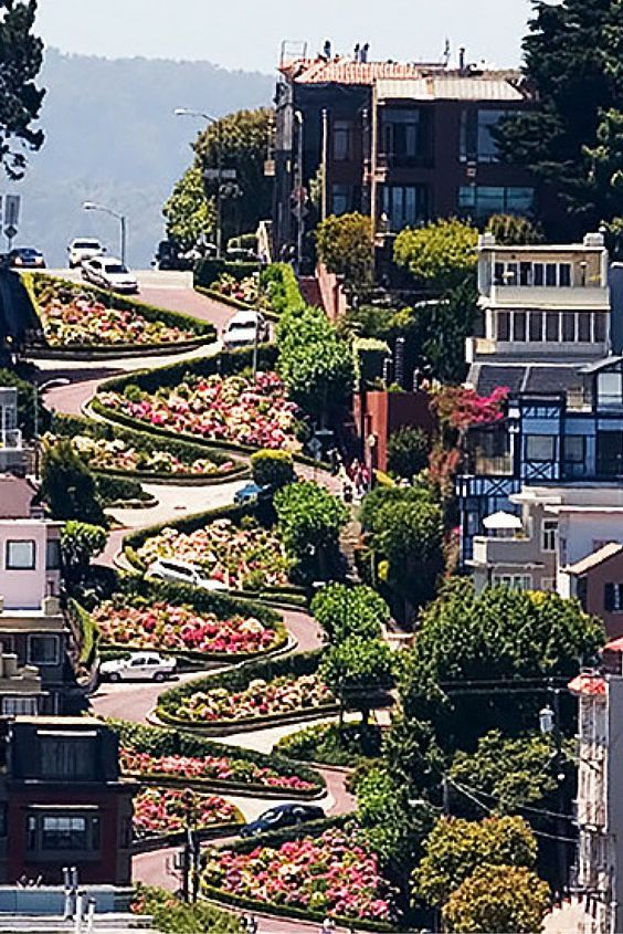 Top 10 Must See Things In San Francisco!  Click through to Avenly Lane Travel to read more!
