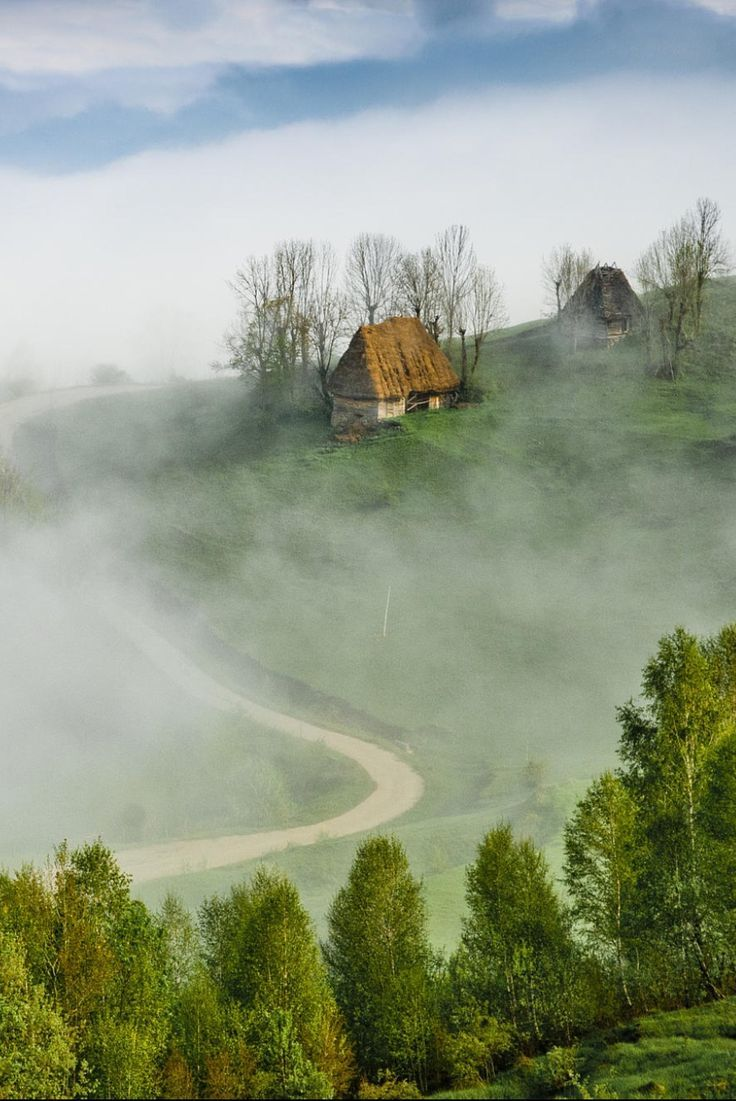 Misty morning in Apuseni mountains by Marian Poară (Romania)