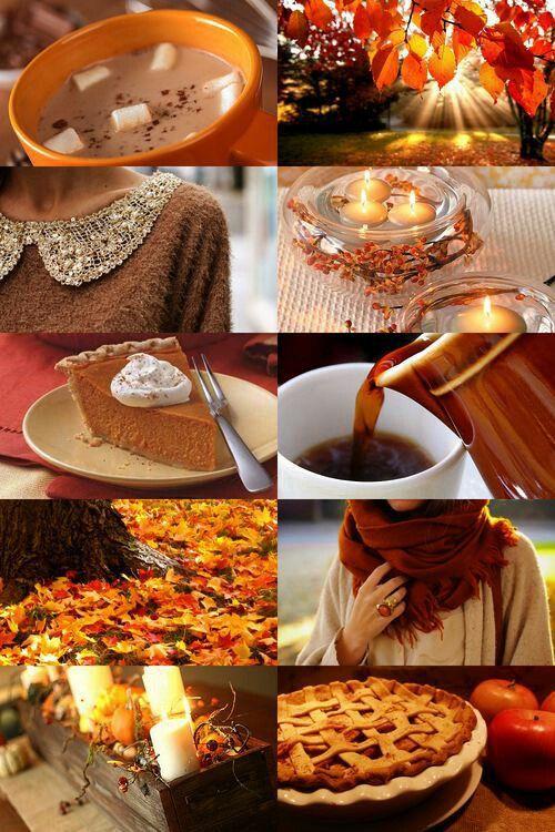 Das schönste am Oktober sind definitiv die goldenen Farben und die Atmosphäre die sie mit sich bringen. Verregnete Tage gehen auch. Dazu heiße Schokolade, Bücher und eine Kuscheldecke.: