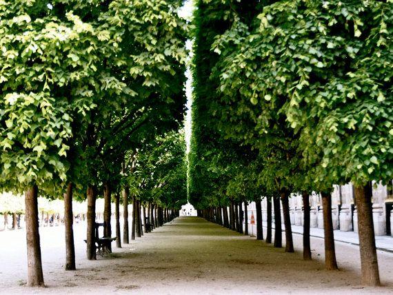 :) Paris